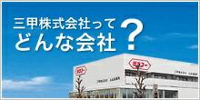 三甲株式会社ってどんな会社?
