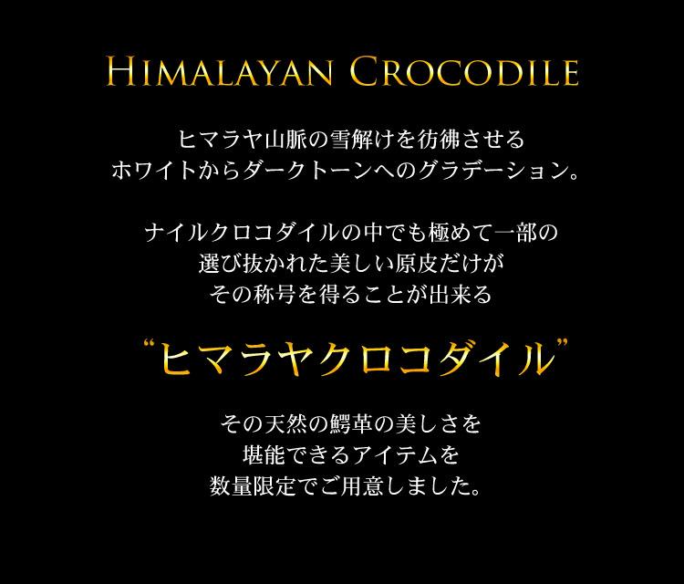 ヒマラヤ クロコダイル
