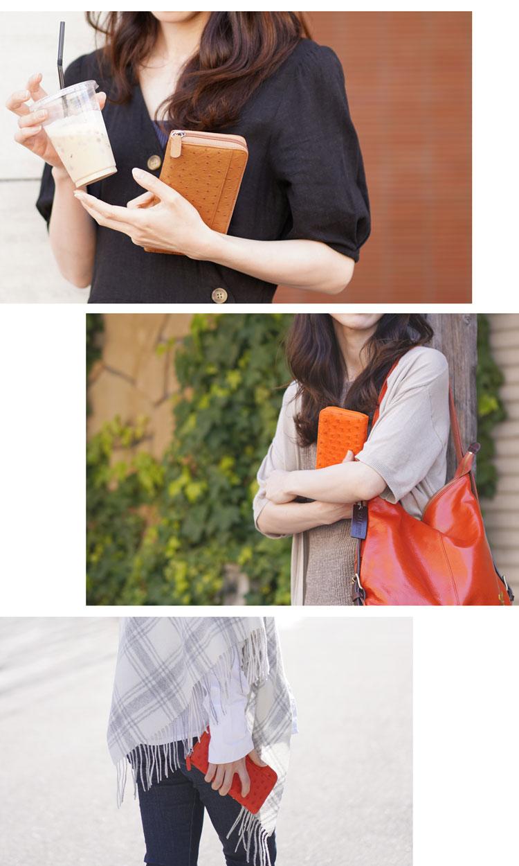 鮮やかなカラーで気分があがるレディース財布
