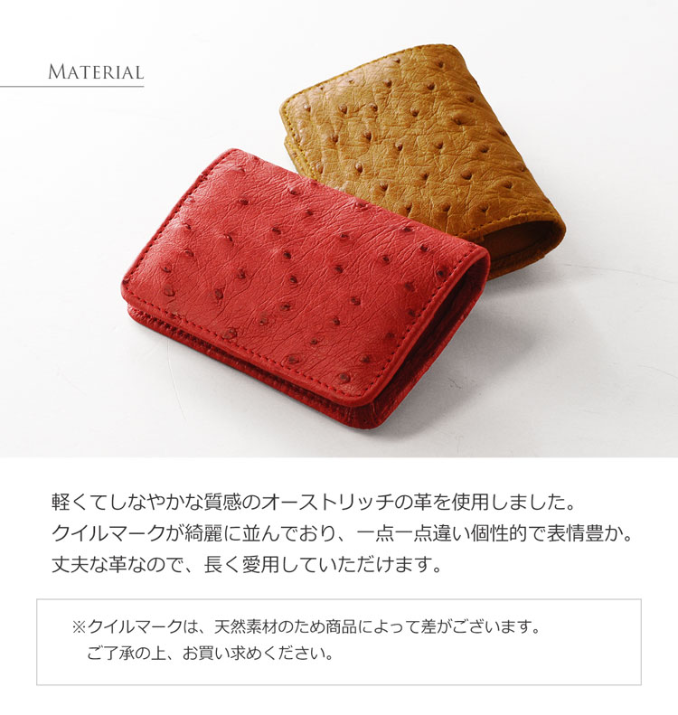 オーストリッチ ボックス型 小銭入れ 財布 / レディース(No.9992)
