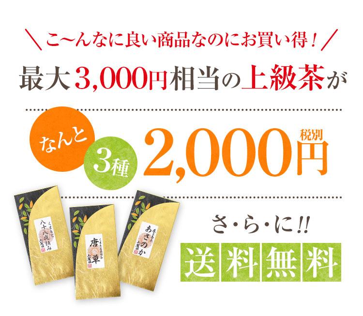 最大3000円相当が割引価格2000円 さらに送料無料