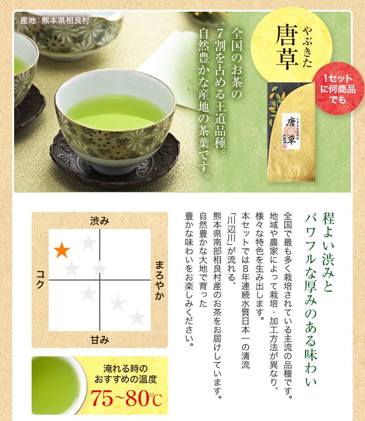 熊本のやぶきた茶 相良村産の玉緑茶