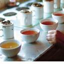 有機オーガニック紅茶