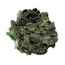 無農薬無化学肥料 杜仲茶