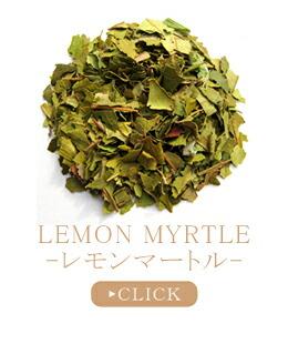 レモンマートル