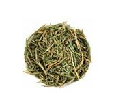 完全無農薬・無肥料の自然栽培 スギナ茶
