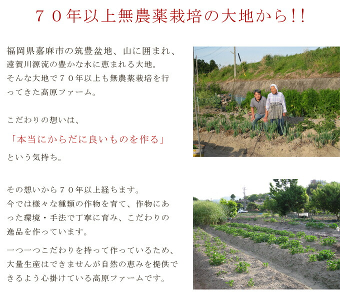 完全無農薬・無肥料の自然栽培 有機オーガニック栽培のヨモギ茶