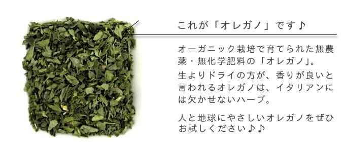 有機栽培オーガニックハーブ 無農薬 無化学肥料 オレガノの説明