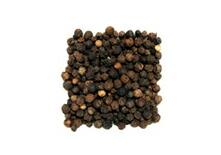 有機栽培オーガニックハーブ 無農薬・無化学肥料ブラックペッパー