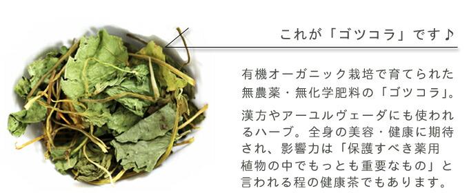 有機オーガニックの無農薬・無化学肥料ハーブ健康茶「ゴツコラ/ゴツコーラ/ツボクサ