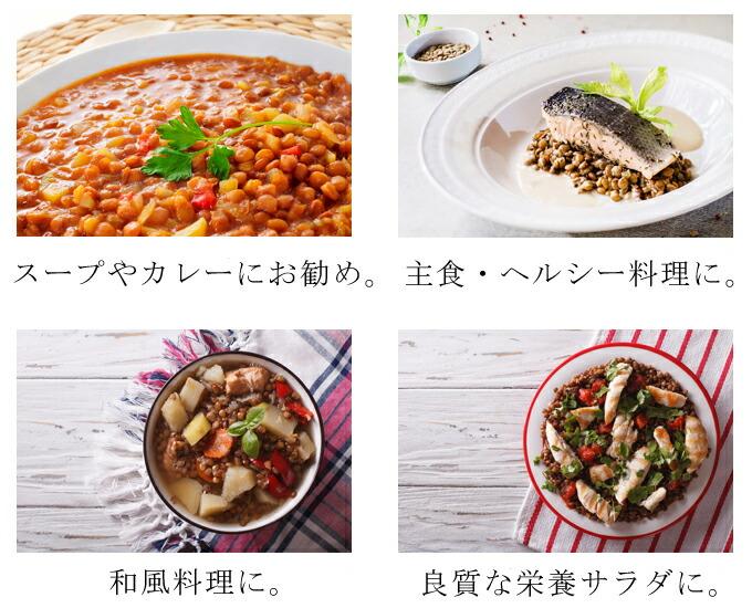 無農薬・有機オーガニック「レンズマメ」料理おすすめ画像