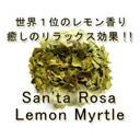 有機レモンマートル