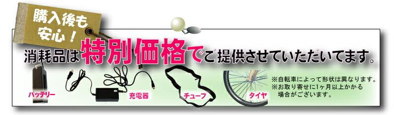 送料無料 電動自転車