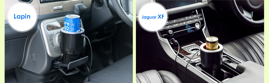 Lapin Jaguar XF