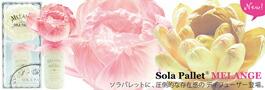 累計販売25万個突破の「SOLA PALLET ソラパレット