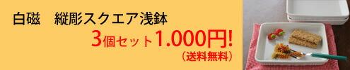 柄おまかせ麺鉢2個セット 【送料無料】