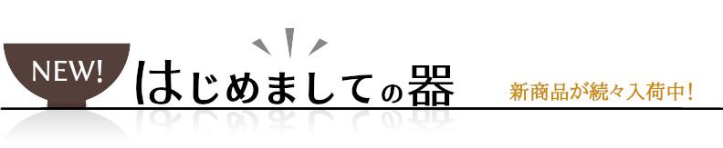 【はじめましての器】新商品が続々入荷中!