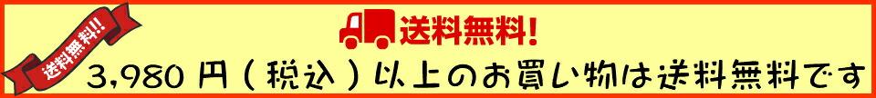 3,980円(税込)以上購入で送料無料