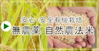 無農薬・有機自然農法米