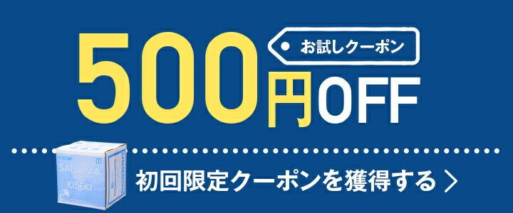 500円OFF クーポン