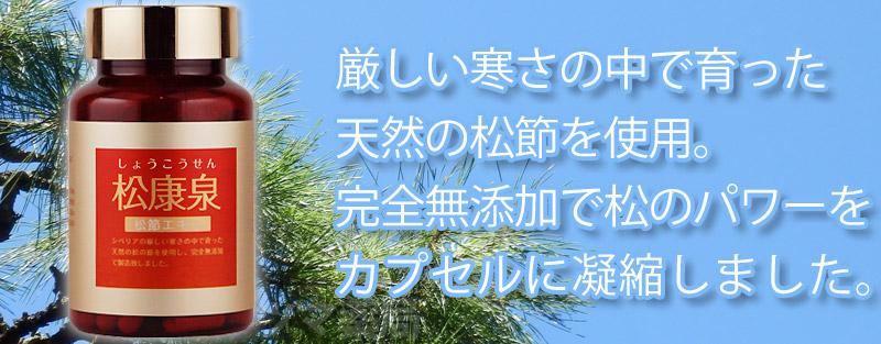 松康泉は天然の松節を使用 完全無添加