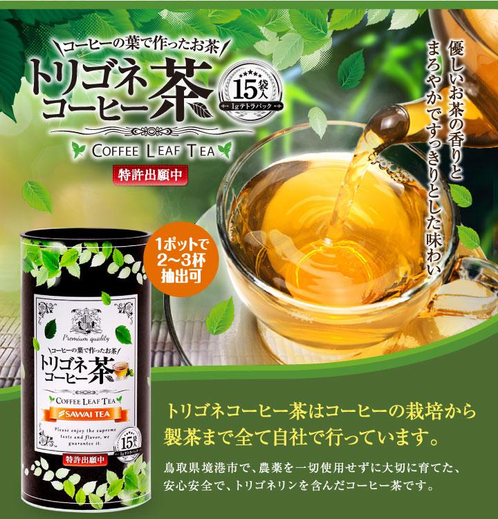 トリゴネコーヒー茶15袋