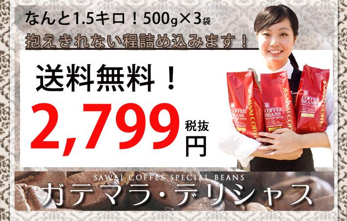 ガテマラ・デリシャス コーヒー 200杯分 500g×3袋 82%OFF 1999円 送料無料