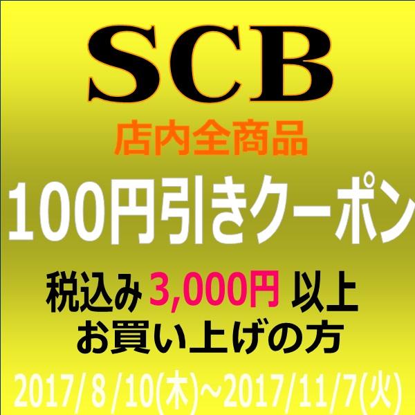 100円引きクーポン