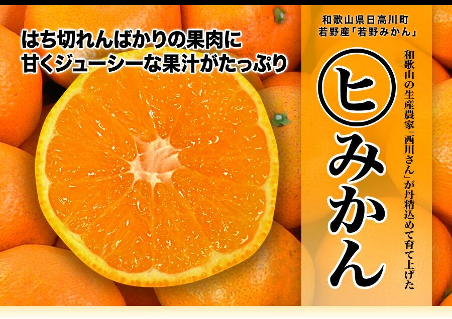 はちきれんばかりの果肉に甘くジューシーな果汁がたっぷり。和歌山の生産農家「西川さん」が丹精込めて育て上げたマルヒミカン