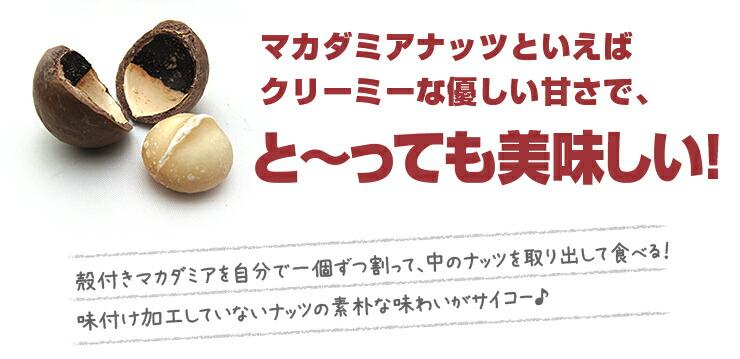マカダミアナッツといえばクリーミーな優しい甘さで、と〜っても美味しい! 殻付きマカダミアを自分で一個ずつ割って、中のナッツを取り出して食べる!味付け加工していないナッツの素朴な味わいがサイコー♪