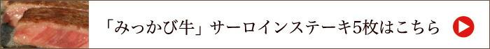【静岡牛】「みっかび牛」サーロインステーキ200g 5枚入