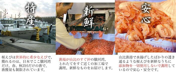 静岡由比産桜えびは、特産、新鮮、安心。