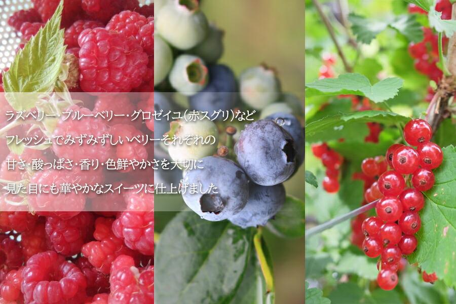 ラズベリー・ブルーベリー・グロゼイユ、赤スグリなどフレッシュでみずみずしい果実で見た目も華やか