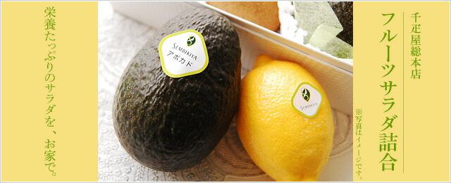 フルーツサラダ詰合せ アボカド オレンジ キウイ レモン
