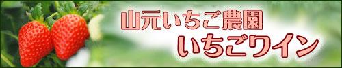 震災より復活した山元町のいちご使用!山元いちご農園いちごワインご購入はコチラ