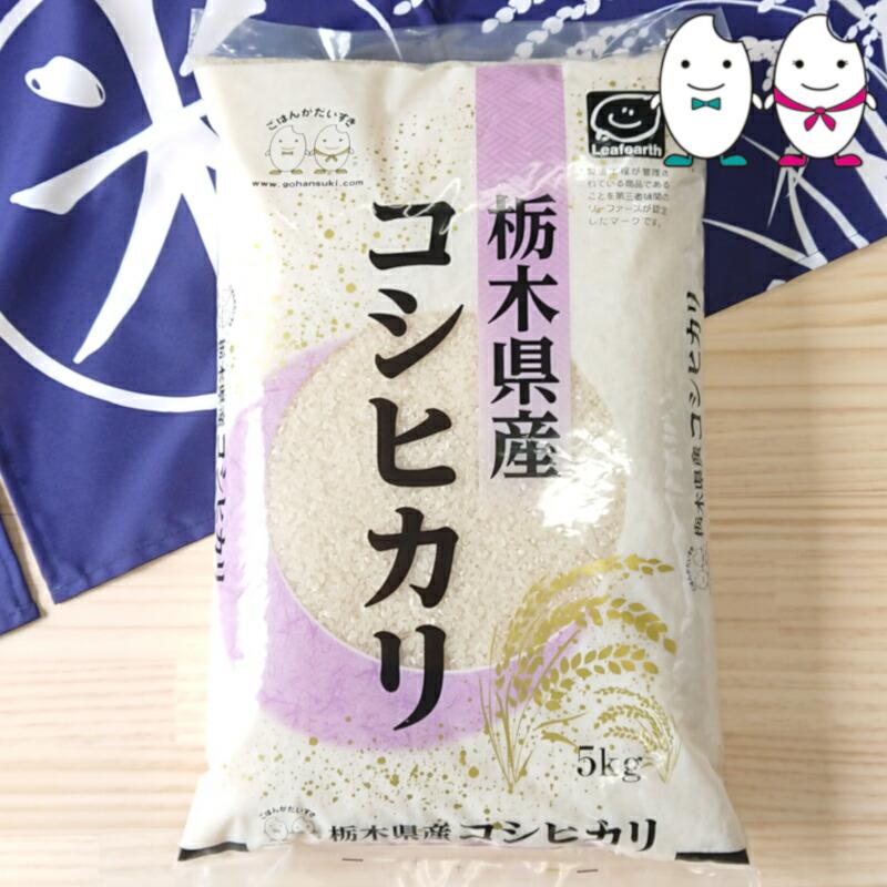 無洗米栃木コシ5