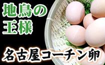 地鶏の王様 名古屋コーチン卵