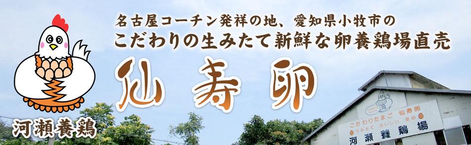 名古屋コーチン発祥の地愛知県小牧市のこだわりの産みたて新鮮な卵養鶏場直売