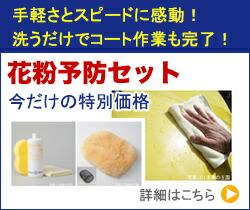 花粉予防セット