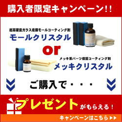 モールクリスタル・メッキクリスタル購入プレゼント 3/25(月)13:00-4/5(金)12:59