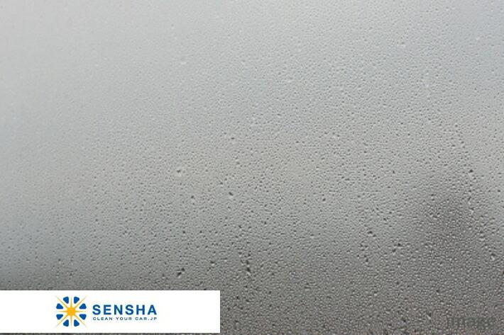 Sensha Car Window Glass View Clear 50ml Anti Fog Coating