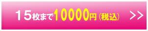 15枚まで 10,000円(税込)