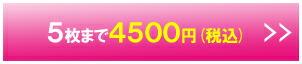 5枚まで 4,500円(税込)