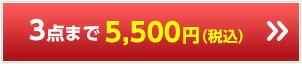 3点まで 5,500円(税込)