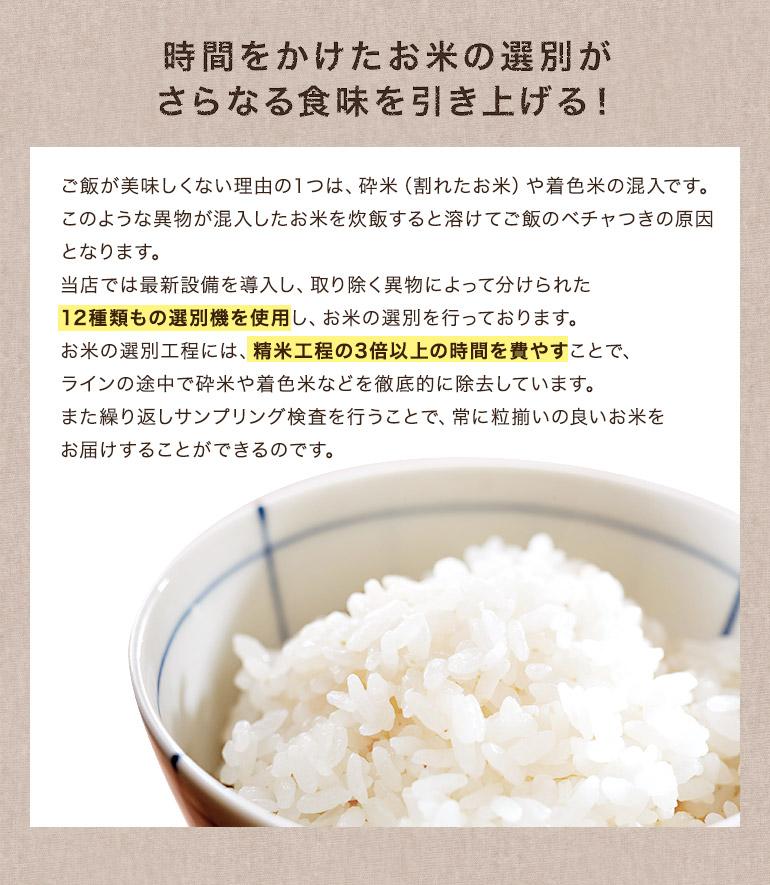 三重コシ(12種類)