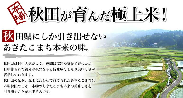 秋田が生んだ極上米