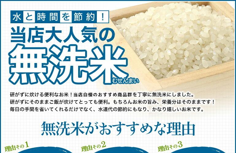 無洗米 10kg 送料無料