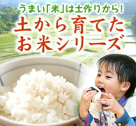 土から育てたお米