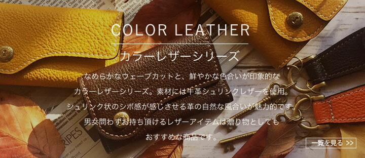 カラーシリーズ
