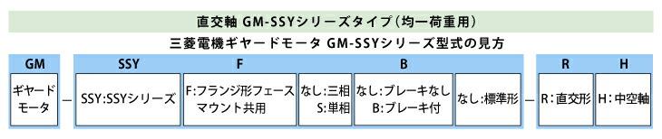 三菱ギヤードGM-SSY型式見方